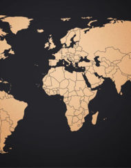 wereld map copper edition